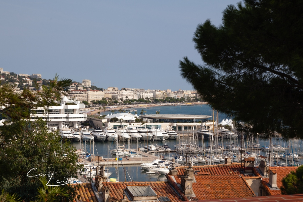 Cannes-23